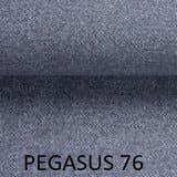 Pegasus-76.jpg